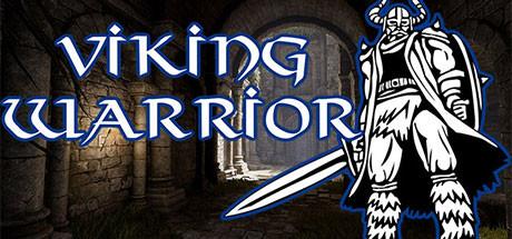 Viking Warrior sur jdrpg.fr